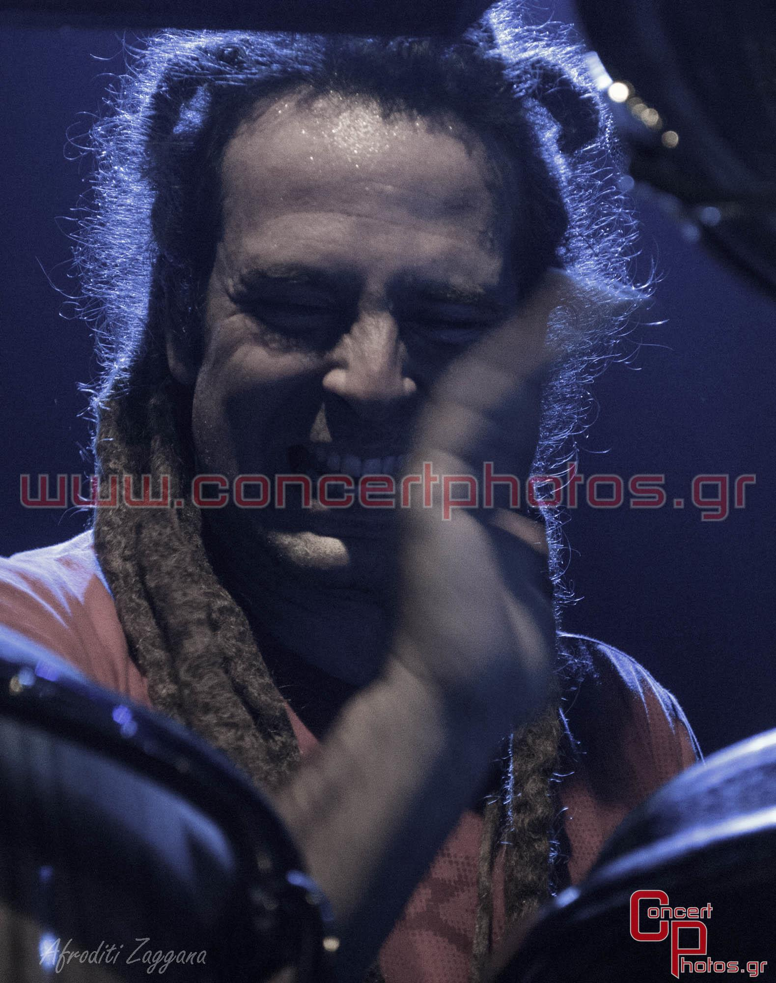 Locomondo- photographer:  - ConcertPhotos-2