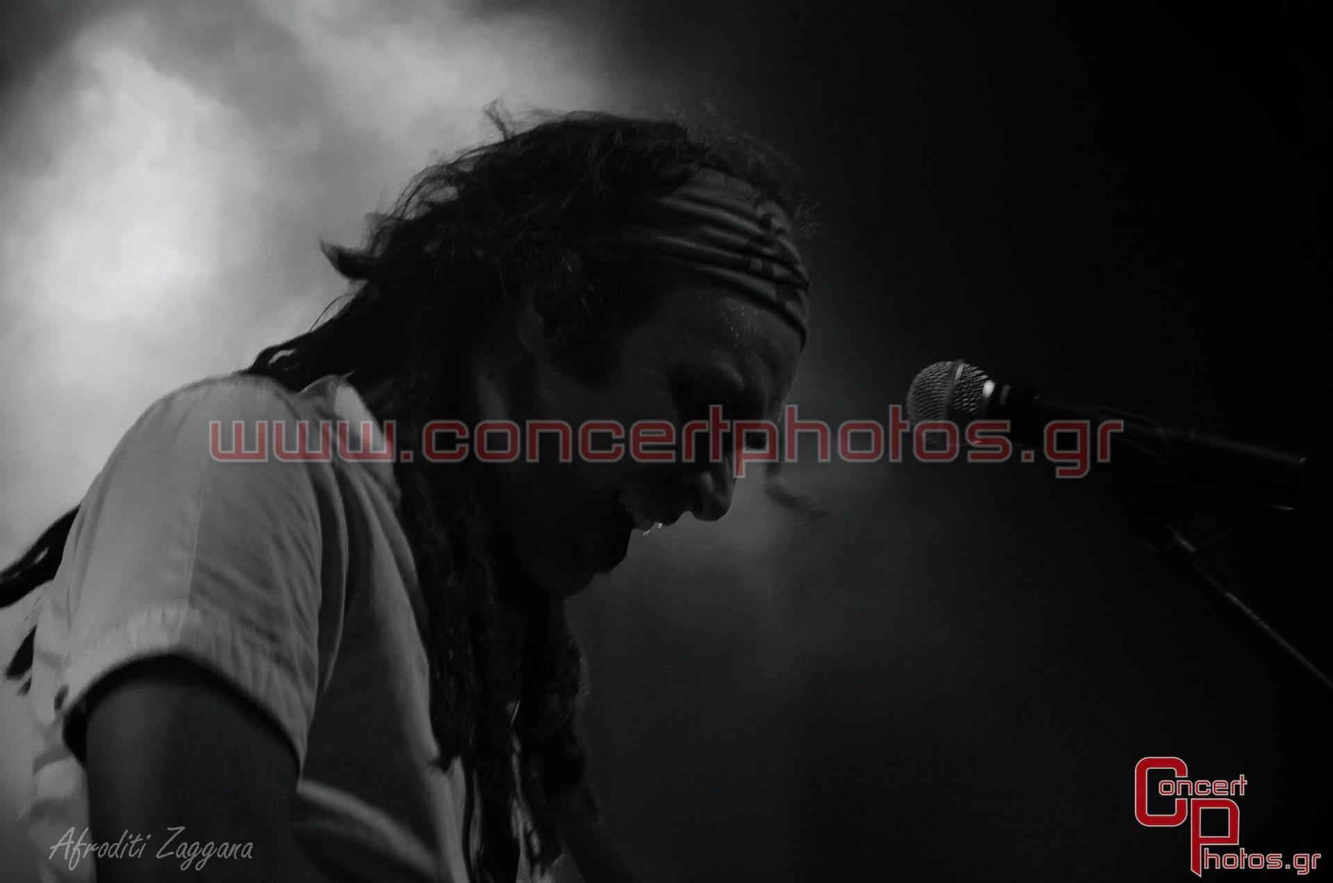 Locomondo- photographer:  - ConcertPhotos-2882